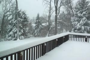 Winter Storm Jonas brings 20 inches of snow