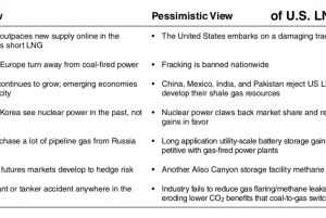 Optimistic and Pessimistic View of U.S. LNG